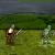 game hiệp sĩ zoombie