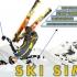Game Ski Sim